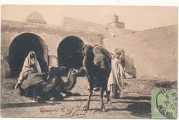 TUNISIE - Fondouk, N°317 - Lehnert & Landrock, Tunis - Tunisie