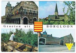 Groetjes Uit Borgloon  (4 Zichten) - Borgloon