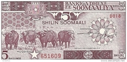 SOMALIE 5 SHILLINGS 1987 AUNC P 31 C - Somalie