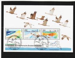 BOX715 DEUTSCHLAND BRD 1996 MICHL BLOCK 36 ESST Used / Gestempelt SIEHE ABBILDUNG - BRD