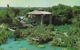 CARTE POSTALE ORIGINALE DE 9CM/14CM : BRACKENRIDGE PARK SAN ANTONIO CHINESE TEA GARDEN TEXAS USA - San Antonio