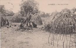 ZAMBEZE - Niger