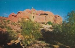 CARTE POSTALE ORIGINALE DE 9CM/14CM : HOLE IN THE ROCK PHOENIX NEAR TEMPE FAMOUS DESERT BOTANICAL GARDEN  ARIZONA USA - Phoenix