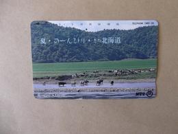 Japan - Telefonkarte Gebraucht - 431  - 118   - Rückseite  Große Nummer - Mit  Jahreszahl - Hell Grau - Japan