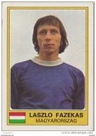 PANINI EURO FOOTBALL 1977 LASZLO FAZEKAS UJPEST MAGYARORSZAG - French Edition