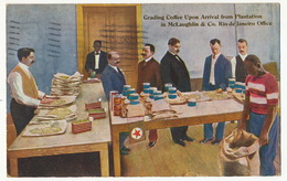 Grading Coffee Upon Arrival From Plantation In Mac Laughlin & Co. Rio Office . P. Used Athens Ohio - Rio De Janeiro