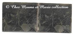 WWI - EPAVE D AVION ABATTU - PHOTO STEREO 12.5 X 5.5 CM MILITAIRE - Guerre, Militaire