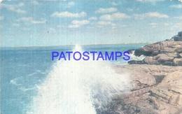 95075 ARGENTINA MAR DEL PLATA MOTIVO TIPICO DE OLAS Y ROCAS ED REY Nº 1643 POSTCARD - Argentina