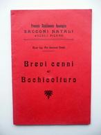Brevi Cenni Di Bachicoltura Stabilimento Bacologico Sacconi Natali Ascoli 1907 - Vecchi Documenti