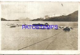 95087 ARGENTINA ISLAS MALVINAS FALKLAND ISLAND UK SOUTH GEORGIA VISTA PARCIAL POSTAL POSTCARD - Argentina
