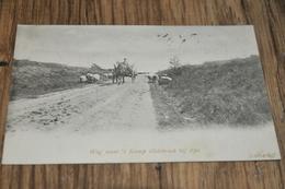 420- Weg Naar 't Kamp Oldebroek Bij Epe - 1903 - Epe