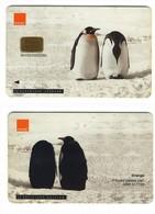 GSM SIM Card With Fix Chip___Orange Hutchinson Telecom UK___penguin___RARE - Royaume-Uni
