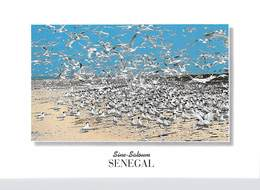 Afrique > COULEURS Du SENEGAL SINE SALOUM Ile Aux Oiseaux  (RENAUDEAU 1177)  *PRIX FIXE - Sénégal
