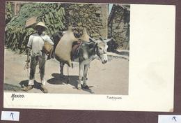 Mexico * âne Paysan  * Mexique  México  Agricultor Mula Tlachiquero * Transporte De Mercancías Transport De Marchandises - Mexique