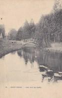Saint Trond, Une Vue Du Parc, Sint Truiden (pk49046) - Sint-Truiden
