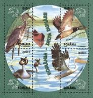 ROMANIA 2004 Birds Of The Danube Delta  S/s  MNH - Blocks & Kleinbögen