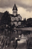 Saint Severin En Condrroz, Eglise Romane Du XII Siècle (pk49095) - Nandrin
