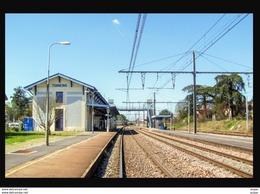 47  TONNEINS   ...  La Gare Interieure - Tonneins