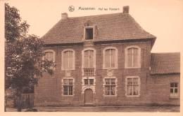 MASSEMEN - Hof Ten Hondert - Wetteren