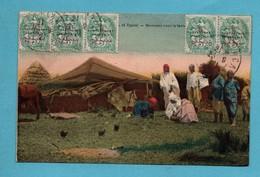 Maroc Scanes Et Types  Nomades Sous La Tente - Maroc
