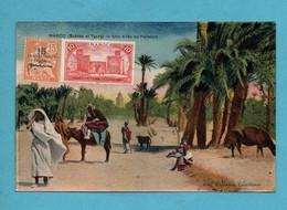 Maroc Scanes Et Types Une Allée De Palmiers - Maroc