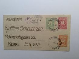 Bulgaria Postage Due 1919-21 1L, 2L, 3L G.ORIHORITZA 1924 RARE On Cover (Bulgarien Brief Bulgarie Lettre - Postage Due