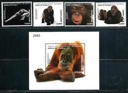 "Sierra Leone    ""Gorillas""    Set & Souvenir Sheet    SC# 4444-48      MNH - Sierra Leone (1961-...)"