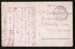 Russia 1921 Postcard Petrograd, Local Letter, Free Delivery - 1917-1923 Republic & Soviet Republic