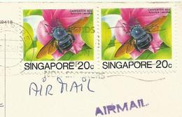 Singapore River Mouth , Honeybees Bee Used Air Mail - Abeilles