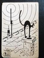 Hungary Amateur Radio Station Card   1972 Cats - Hungary