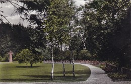 Brakel, Krz Höxter Kriegsgräberstätte, Oorlogskerkhof (pk49135) - Brakel