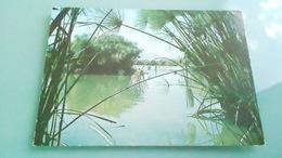 THLOT CARTE THEME PAYSAGE N° DE CASIER 238DETAIL RECTO VERSO DE LA CARTE AVEC LES 2   PHOTOSCARTE DE 150 X 105 - Postcards