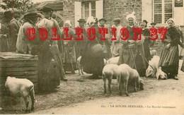 ☺♦♦ FOIRE Aux PORCS à La ROCHE BERNARD - MARCHE Au COCHON - COCHONS PORC - CARTE 1900 - Foires