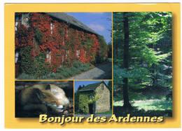Bonjour Des Ardennes  (4 Zichten) - Butgenbach - Buetgenbach