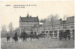 Rethy NA3: Paardenkweekerij Van M. Du Four 1915 - Retie