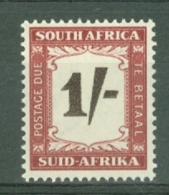 South Africa: 1950/58   Postage Due    SG D44    1/-    MNH - Südafrika (...-1961)