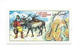 Lapland Laponie Chromo Barratt TB 65 X 35 Mm Didactique 2 Scans - Cigarettes