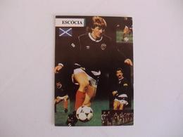 Football/Futebol Ecosse Scotland Players World Cup Of México1986 Portuguese Pocket Calendar 1986 - Calendriers