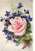Belle Illustrée : Violettes Et Rose . - Fleurs