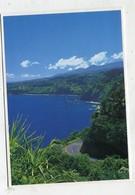 USA - AK 326817 Hawaii - Maui - The Road To Hana - Maui
