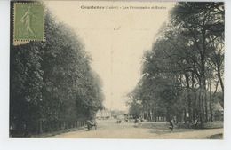 COURTENAY - Les Promenades Et Ecoles - Courtenay