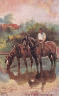 AR58 Animals - Cool And Refreshing By Harry Payne, Horses In A Stream - Horses