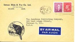Canada Cover Sent To USA Regina Sask 8-3-1951 (Isman Hide & Fur Co. Ltd.) - 1937-1952 Reign Of George VI