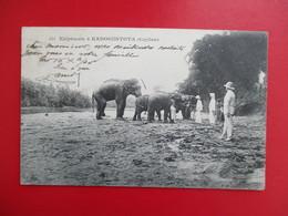 CPA SRI LANKA CEYLON ELEPHANTS A KADOGUSTOTA - Sri Lanka (Ceylon)