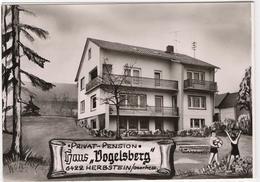 Privat-Pension Haus Vogelsberg - Herbstein - & Hotel - Unclassified