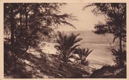 DAKAR / COIN CORNICHE / VIALE 164 - Sénégal
