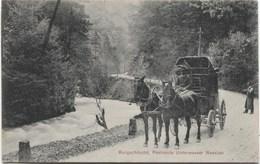 UNTERWASSER - NESSLAU SG 1911 Postkutsche - SG St. Gall