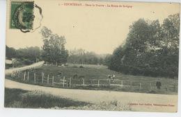 COURTENAY - Dans La Prairie - La Route De Savigny - Courtenay