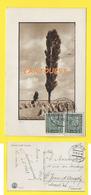 TCHEQUIE  1931  ( Úpice ) - Tchéquie