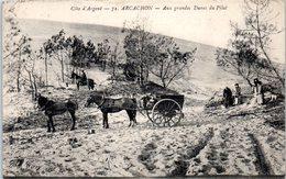 33 - ARCACHON -- Aux Grande Dunes Du Pilat - Arcachon